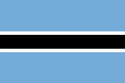 BOTSWANA - HAND WAVING FLAG (MEDIUM)